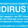 Противовирусная гомеопатическая аптечка Индирус( профилактика заболеваний) гранулы