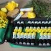 Аптечка гомеопатический набор №24, гранулы, C200