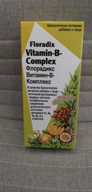 Витамин-В-Комплекс Флорадикс  (Vitamin-B-Complex Floradix) Salus тоник  250 мл